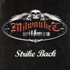 Couverture de l'album Strike Back