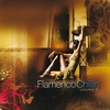 Cover of the track Flamenco Al Arabia
