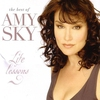 Cover of the album Life Lessons - the Best of Amy Sky