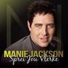Cover of the album Sprei Jou Vlerke