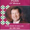 Couverture de l'album Back Home to Ireland