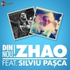 Couverture de l'album Din Nou (feat. Silviu Pasca) - Single