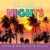 Cover of the album Caribbean Nights (Re-Recording)