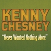 Cover of the album Never Wanted Nothing More - Single