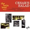Couverture de l'album The Latin Beat 2