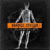 Couverture du titre Sturm (Martin Bodewell remix)