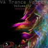 Couverture de l'album VA Trance Voices, Vol. 2