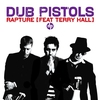 Cover of the album Rapture (feat. Terry Hall)
