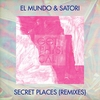 Cover of the track Secret Places (System of Survival Remix)