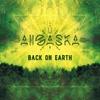 Couverture de l'album Back On Earth