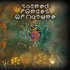 Cover of the album Sacred Forces of Nature