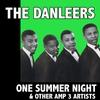 Couverture de l'album One Summer Night & Other Amp 3 Artists