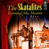 Couverture de l'album Essential Ska Masters