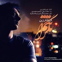 Cover of the track Negaranetam ( نگرانتم ) - Single