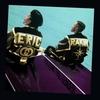 Couverture de l'album Follow the Leader (Expanded)