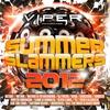 Couverture de l'album Summer Slammers 2012