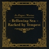 Cover of the album Bellowing Sea - Racked by Tempest