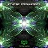 Couverture de l'album Cymatic Freakuencies