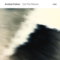 Cover of the track Into the Silence