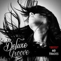Cover of the track Deluxe Groove - A Selection of Deep House (60 Tracks)