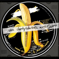 Cover of the track The Dandy Warhols Are Sound