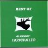 Couverture de l'album Best of Ausseer Hardbradler