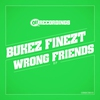 Cover of the album Wrong Friends - EP