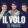 Cover of the track El Triste