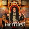 Couverture de l'album The Fittest