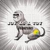 Couverture de l'album Valparaiso
