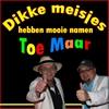 Cover of the album Dikke Meisjes Hebben Mooie Namen - Single