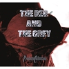 Couverture de l'album The Red and the Grey
