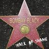 Couverture de l'album Walk of Shame