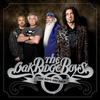 Couverture de l'album The Boys Are Back