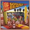 Couverture de l'album Sons of the Beaches