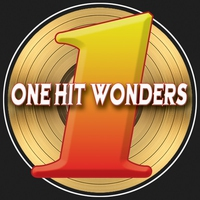 Cover of the track One Hit Wonders (Re-Recorded Versions)