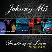 Cover of the track Fantasy Of Love (The Singles)