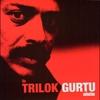 Couverture de l'album The Trilok Gurtu Collection