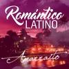Couverture de l'album Amarraito - Single