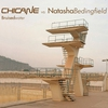 Cover of the album Bruised Water (Chicane vs. Natasha Bedingfield)