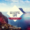 Cover of the track Beautiful Life (feat. Sandro Cavazza)