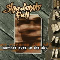 Cover of the track Somber Eyes to the Sky