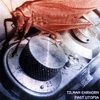 Cover of the album Past Utopia