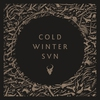Cover of the album Cold Winter Sun - Single