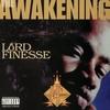 Couverture de l'album The Awakening
