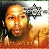 Couverture de l'album Gift of Life