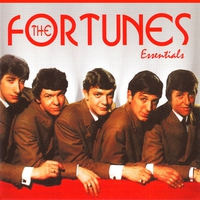Cover of the track The Fortunes: Essentials