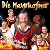 Couverture de l'album Teuflisch Aufgeign - Himmlisch Jauchzen