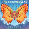 Cover of the track Spirits