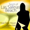 Cover of the album Spirit of Las Salinas Beach, Vol. 1 - Ibiza Deep House Collection